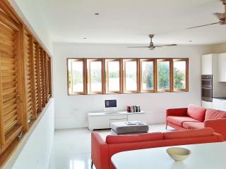 Pear Tree Apartment - Saint James vacation rentals