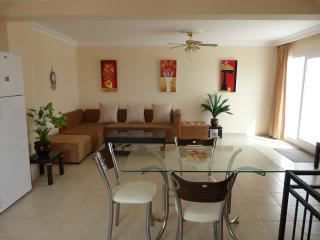 Apartment in Didim sleeps 6 - Didim vacation rentals