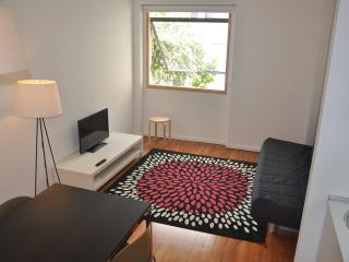 114-1 OPO.APT-Art Deco Apartment - Porto vacation rentals
