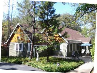 Twain Harte 4 Seasons Resort - Lake Privileges - Camp Connell vacation rentals