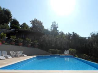 COTTAGE SOLE - Coreglia Antelminelli vacation rentals