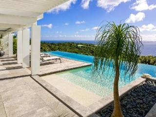 Infinite View on Lurin hillside with panoramic views & cascading infinity pool - Gouverneur vacation rentals