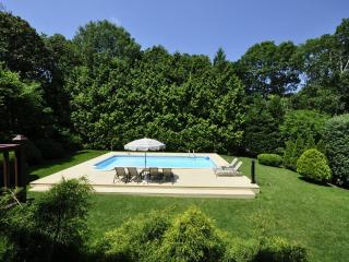 Hampton Bays nice 4bd,2ba,CAC,IGP,Billiard,Tennis - Water Mill vacation rentals