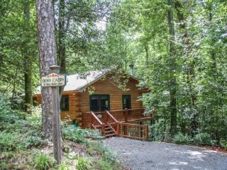 BOO CABIN- 2BR/1BA- CABIN WITH ACCESS TO COMMUNITY LAKE SLEEPS 4, HOT TUB, CANOE, GAS GRILL, WOOD BURNING FIREPLACE, AND PET FRI - Blue Ridge vacation rentals