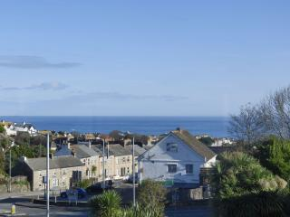 Lowena Studio - Saint Ives vacation rentals
