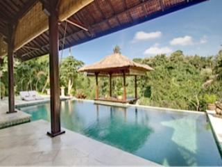 Riverside Villa, fantastic jungle view - Image 1 - Denpasar - rentals
