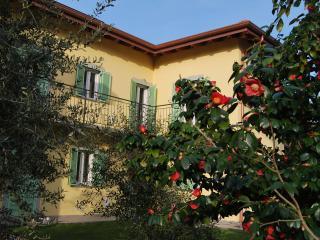 Taino Lago Maggiore - Taino vacation rentals