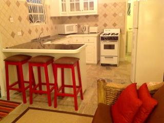 Two Minutes From The Beach -  LITTLE GATES ( One Bedroom Apartment) - Christ Church vacation rentals