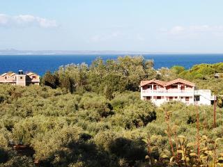 Arazzo Holiday Apartment #4 - Zakynthos vacation rentals