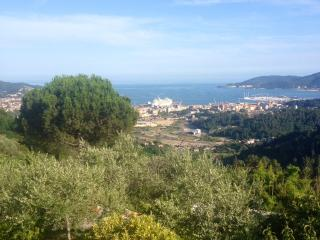 Villa Castelletto close to Cinque Terre - La Spezia vacation rentals