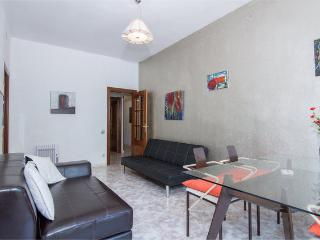 Spacious and quiet apartment!!! - Barcelona vacation rentals