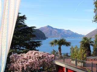Apartment  w.garden for dog,near lake,shared pool - Lugano vacation rentals