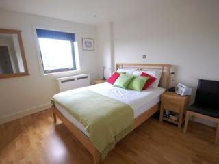 Nothing old school about this superb one bed at Kings Cross - London vacation rentals
