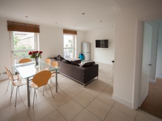 Modern 3 Bedroom Apartment in London Zone 1 - Rye vacation rentals