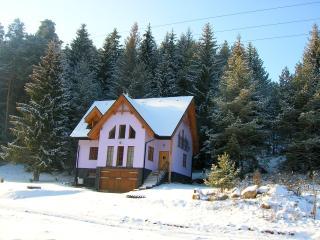 Chalet Lopusna Valley - Poprad vacation rentals