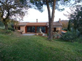 Poderino degli Ulivi - Scansano (Tuscan Maremma) - Scansano vacation rentals