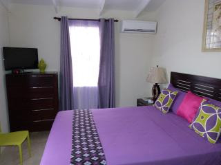 Hopeville Guest House 2 minutes drive from airport - Christ Church vacation rentals