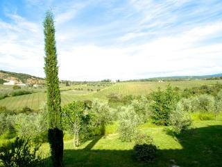 Near Siena and Florence, Private Home with Views - Siena vacation rentals