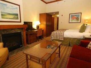 Deep Powder at Stowe Mountain Lodge/Studio - Stowe vacation rentals