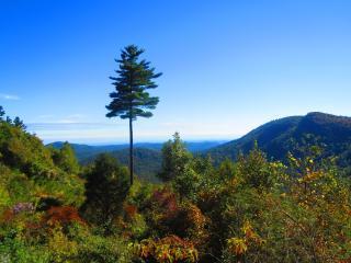 SAGEE MOUNTAIN WATERFALL VIEWS OF GA & S CAROLINA! - Highlands vacation rentals