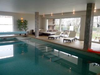 LUMINEUX F3 PISCINE-CLIMATISATION-ESPACE VERT - Bas-Rhin vacation rentals