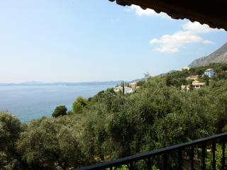 Aphrodite's Apartments (One Bedroom Apartment) - Nissaki vacation rentals