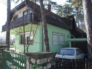 Leo - Siofok vacation rentals