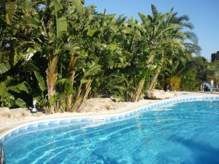 alexandrae - Fanusa vacation rentals