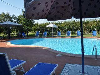 Il Torrione  casa vacanza - Castel Bolognese vacation rentals