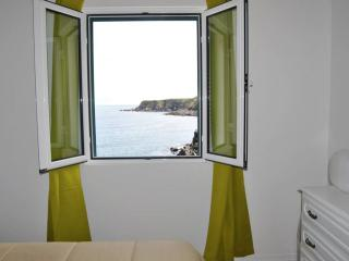 Beach House in Azores by RE - Vila Franca do Campo vacation rentals