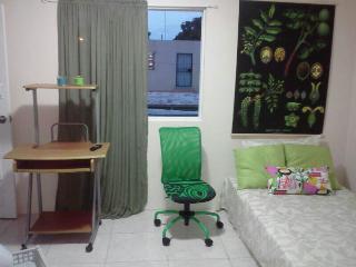 Studio Apartment in Santo Domingo city - Santo Domingo vacation rentals