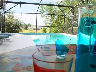 DISNEY Vacation Paradise Villa - Clermont vacation rentals