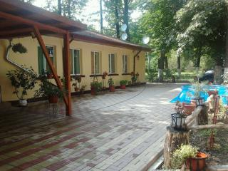 Forest Mirage - Prahova County vacation rentals