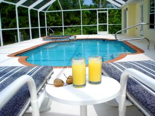 Sunny Daze. A stunning home in perfect location - Rotonda West vacation rentals
