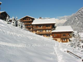Residence Le Grand Balcon - Les Houches vacation rentals