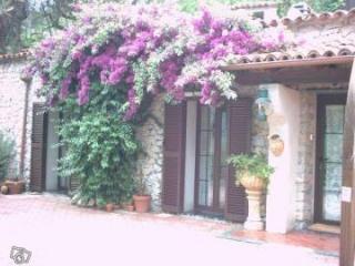 casa antica dei fiore - Bardino Nuovo vacation rentals