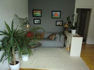Welcoming Copenhagen apartment near Groendal st - Copenhagen vacation rentals