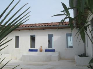 Villa Blanche Gers Exotique - Gers vacation rentals