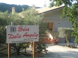 SELVA DELLA AMPOLLA - Civitaquana vacation rentals