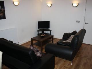 2BR Met North Greenwich - Sevenoaks vacation rentals