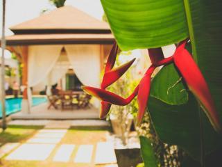 VILLA OASIS 3 BEDROOM LARGE POOL - GREAT LOCATION! - Nai Harn vacation rentals