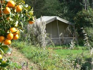 Safaritent,  Terradomilho, Monchique, Algarve - Sao Teotonio vacation rentals