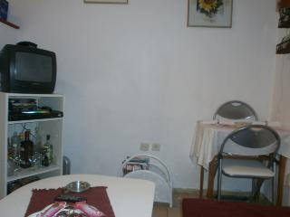 INDEPENDET APARTMENT CLOSE TO THE CITY CENTER - Istria vacation rentals