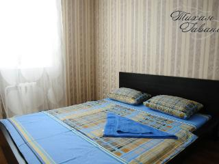 excellent 2 room apartment - Syktyvkar vacation rentals