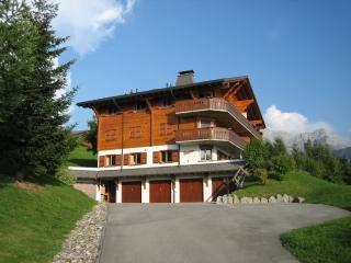 Champ d'Hermines A5 - Villars-sur-Ollon vacation rentals