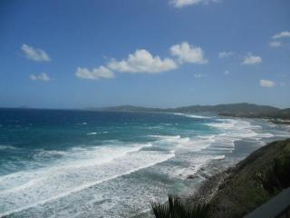 Jewel of the C - Seaside Retreat at St. C Condos - Saint Croix vacation rentals