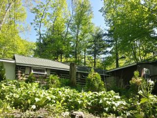 Painted Fern- Classic Log Cabin w modern amenities - Matamoras vacation rentals