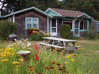 July Weekly Cottage Rental - Harwich Port vacation rentals