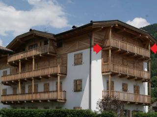 Great Apartment Very Cozy - apt. n.6 - Concei vacation rentals
