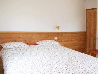 Sunny Apartment well Located - apt n.8 - Passo Tonale vacation rentals
